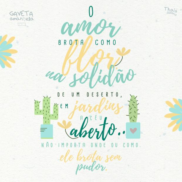 O_Amor_Brota2